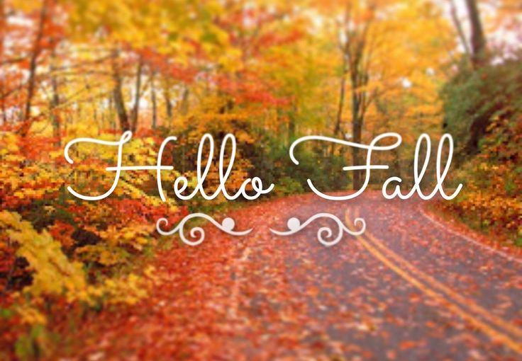 Fall Yoga Offerings and Meditation withHeidi!
